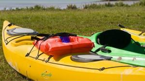 26 Things to do in Sarasota