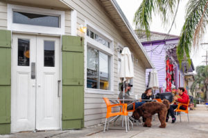 dog friendly restaurants in Sarasota